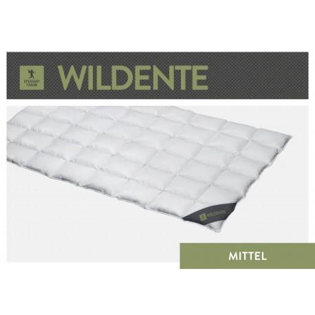 Spessarttraum Wildente Cassettendecke Medium 135x200 Daunen